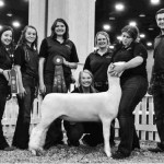 Northern Sheep Production students earn honors